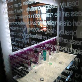 salle de douche principale privative